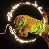 Цирки в Верхней Салде
